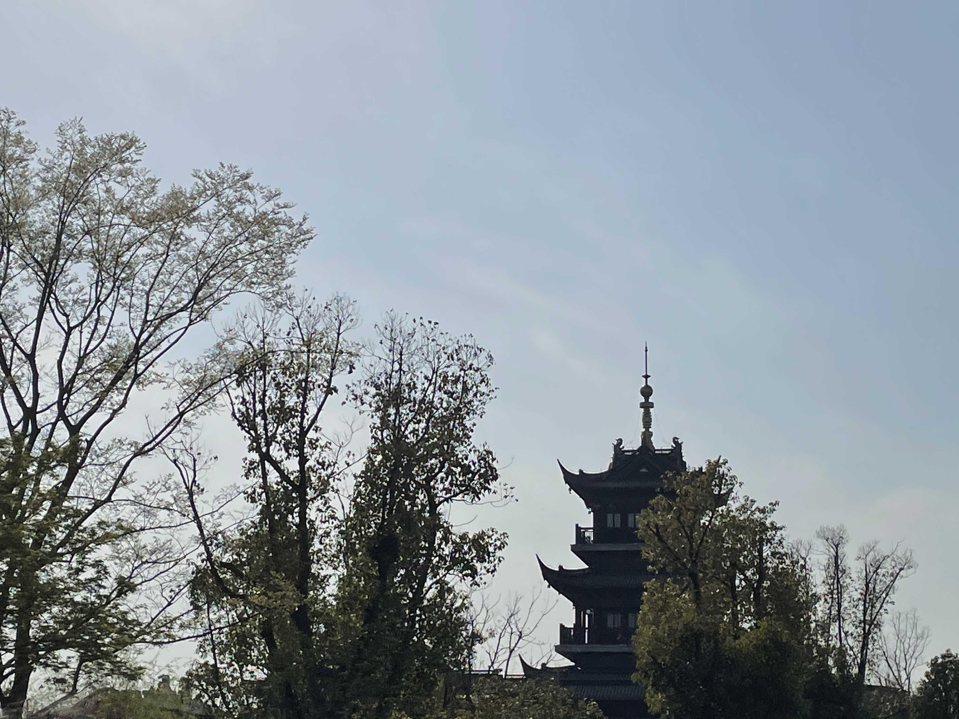 扬州世博会志愿者培训参观记录